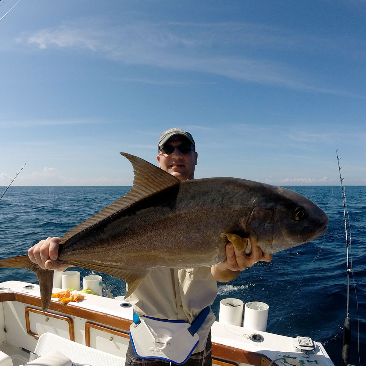 Amberjack caught in Panama.