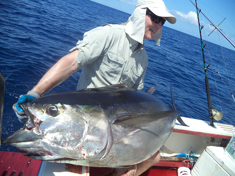 Tuna catch in Panama